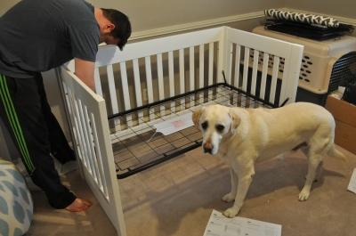 Building Crib 2