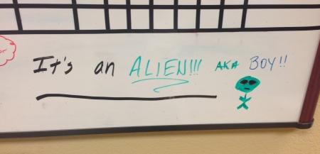 It's an Alien
