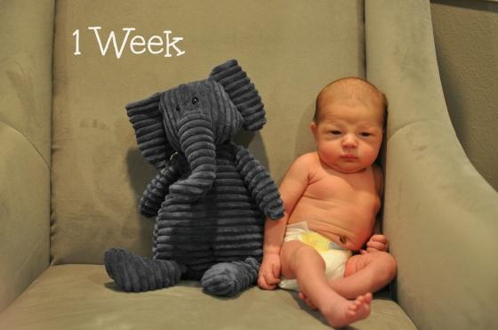 Jack 1 week