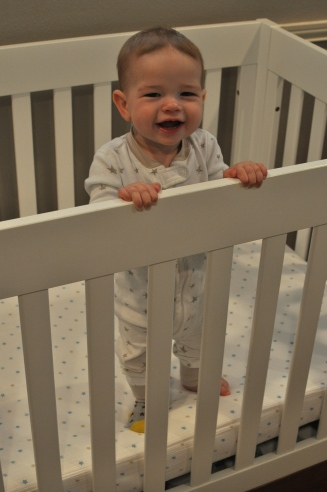 Stand in Crib