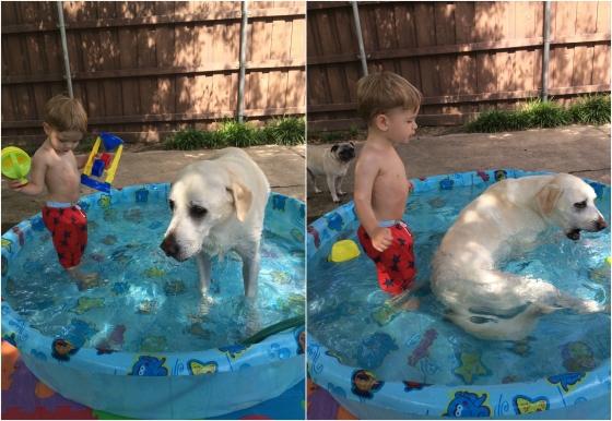 Jack + Bones Pool