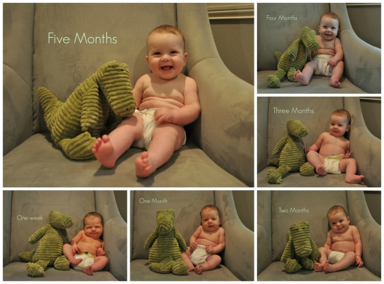 Five Month Collage